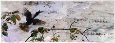 John Wolseley - Rhinoceros Hornbill with its sonogram - Roslyn ...