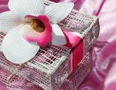 Cymbidium Orchid White Pink Wedding Favor Box