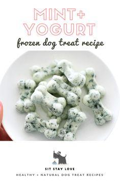 Dog Training Chewing Frozen mint and yogurt dog treats in a dog bone shape.Dog Training Chewing Frozen mint and yogurt dog treats in a dog bone shape Puppy Treats, Diy Dog Treats, Healthy Dog Treats, Homeade Dog Treats, Dog Treats Grain Free, Dog Biscuit Recipes, Dog Treat Recipes, Dog Food Recipes, Dog Biscuit Recipe Grain Free