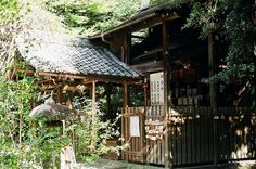 ileftmyheartintokyo: 大豐神社:處處是綠意。 by SilverYang on Flickr.