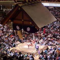 #sumo #tokyo #snacking