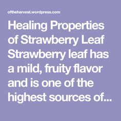 Healing Properties of Strawberry Leaf Strawberry leaf has a mild, fruity flavor and is one of the highest sources of naturally occurring Vitamin C available. As with raspberry leaf it makes a very pleasant spring tonic and is especially beneficial to pregnant and nursing mothers and to young children. It is very soothing to the…