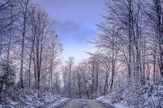 Photography: pierwszy śnieg