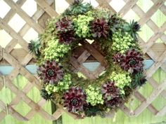 succulent wreath love