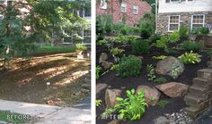 Yard landscaping ideas before and after