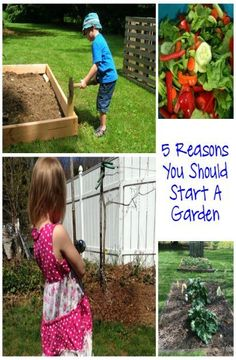 5 Reasons You Should Start a Garden from This Mama Loves. Now that I am a mom, I want my kids to experience growing your own garden. I want them to not only know how to grow a garden, but why it is important as well.