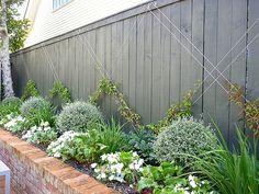 Garden Inspiration, Garden Ideas, Backyard Ponds, Modern Garden Design, Backyard Designs, Bed Design, Garden Styles, Hedges, Trellis