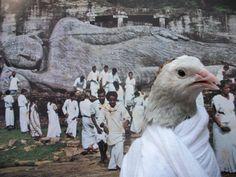 Cutu visita un templo budista en India