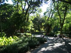 Located Near Daddy Long Legs Art Hotel, The Company's Garden is a park and heritage site Find Hotels, Hotels Near, Wisteria Arbor, African Museum, Garden Labels, Luxembourg Gardens, Daddy Long, East Indies, Houses Of Parliament