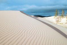 Oregon Dunes National Recreation Area at Umpqua Dunes (John Dellenback Dunes Trail)