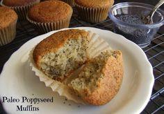 Paleo poppyseed muffins