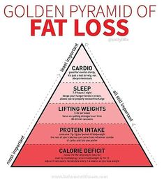 If You Want to Lose Weight, a Trainer's Fat-Loss Pyramid Will Show You What's Most Important - Weight Loss - Diet Quick Weight Loss Tips, Weight Loss Snacks, Losing Weight Tips, Weight Loss Plans, Weight Loss Program, How To Lose Weight Fast, Reduce Weight, Diet Program, Diet To Lose Fat