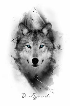 I really like the color only being in the eyes grey tattoo, wolf eye tattoo Artwork Lobo, Wolf Artwork, Wolf Tattoos Men, Animal Tattoos, Tattoo Wolf, Owl Tattoos, Inca Tattoo, Wolf Tattoo On Back, Fish Tattoos