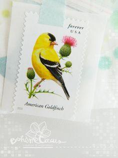 Bird stamp - Bohème Circus