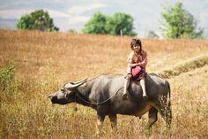 The girl riding to school by sakura565  girl travel summer asia school bagan burma myanmar yangon birma sakura565