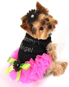 Caressa Ruffled Dog Dress...SO CUTE!! Available at http://doggyinwonderland.com/item_1800/Caressa-Ruffled-Dog-Dress.htm