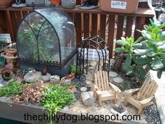 The Chilly Dog: Fairy Gardens