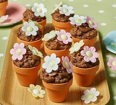 Flowerpot chocolate chip muffins. Children will love to make these yummy double chocolate chip cakes topped with rice paper flowers - perfect for a kids Easter baking project