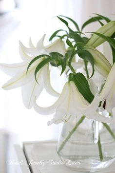 my favorite flowers: casablanca lilies stunning to have two dozen in a big glass vase!