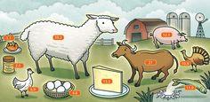 탄소발자국 세어보기 - 본문 내용: 각 동물에 써있는 숫자는 바로 탄소발자국(footprint)입니다. 탄소발자국이란 원료, 만드는 과정, 사용하고 버려지는 과정의 모든 과정에서 발생하는 이산화탄소(CO₂)의 배출량을 kg 단위로 표시하는 것입니다.