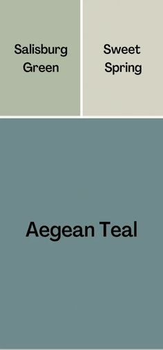 Teal Paint Colors, Teal Color Schemes, Kitchen Paint Colors, Paint Colors For Home, House Colors, Sage Color Palette, Exterior Color Palette, House Color Palettes, Paint Color Palettes