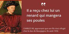 Charles VII connaît la perfidie de son fils. Charles le Téméraire qualifiera Louis XI d'« universelle aragne »