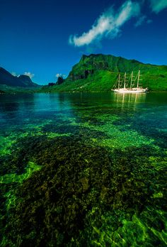 Windstar sailing ship in Cook's Bay, Moorea, French Polynesia ✯ ωнιмѕу ѕαη∂у