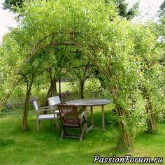 Идеи для творчества (дома, в саду-огороде) - запись пользователя Olga202202 в сообществе Болталка в категории Сад и огород