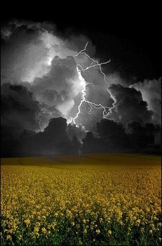 Amazing Storm...Brought to you by #House of #Insurance in #eugeneoregon: