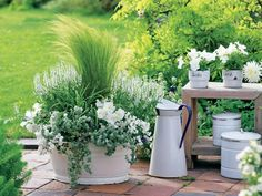 The most beautiful ornamental grasses for pots - Planting puts you in a good mood here: in the large enamel tub, the upright feather grass (Stipa te - Garden Cottage, Garden Pots, Garden Tub, Shade Garden, Landscaping With Rocks, Garden Landscaping, Grasses For Pots, Shade Perennials, Gardening