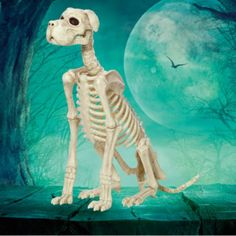 Halloween Decorations Indoor Outdoor Large Dog Skeleton Poseable Head and Jaw…