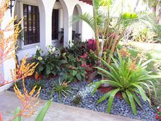 florida landscaping - Yahoo! Search Results
