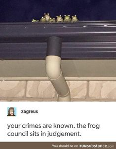 Punish you in the name of the frogs