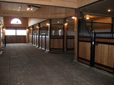 Rolf Carlyle Equestrian Centre