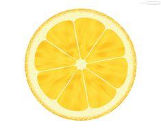 Lemon Slice Drawing Lemon Slice Clip Art
