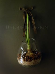 Roost glass terrarium from aHa! ModernLiving.