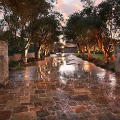 stone driveways pintrest | Love the tree lined stone driveway | Dream Home Ideas - Driveways