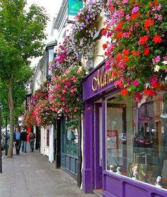 Town of Malahide, Ireland