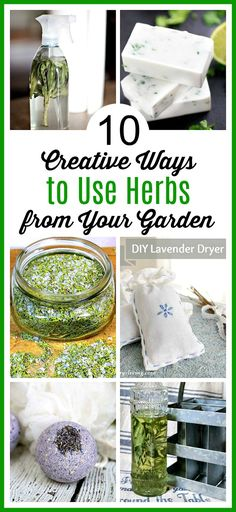10 Creative Ways to Use Herbs from Your Garden- If you grew too many herbs, there are many different, fun ways to put them to use! Check out these creative ways to use herbs from your garden! | ways to use up extra herbs, lavender, sage, rosemary, cilantro, homemade soap, DIY beauty products, grow your own herbs #diy #garden #gardenhacks #gardening #herbs #crafts