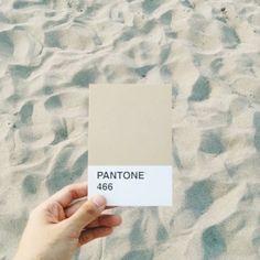 Life's a beach. : @alfreddygutz