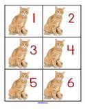 Pets Theme Activities for Preschool PreK and Kindergarten
