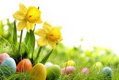 Sprüche, Zitate und Gedichte zu Ostern: kurz, witzig und zum Nachdenken