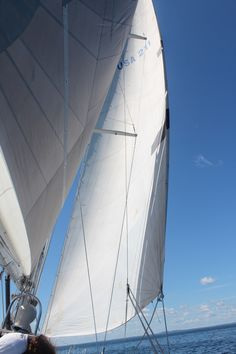 American Promise under sail on a beautiful day. Sailing Yachts, Sailing Ships, Marine Debris, Naval Academy, Strand, Beautiful Day, American, Collection