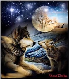 Beautiful Wolf Mom & pup. Night sky.