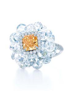 Tiffany & Co. 2014 Blue Book Collection Fancy Intense yellow orange diamond ring set in platinum Jewelry 2014, Book Jewelry, High Jewelry, Jewelry Collection, Jewelry Rings, Book Collection, Spring Collection, Luxury Jewelry, Women Jewelry