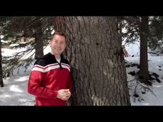 ▶ Helpful and Great Idea for Empath & Sensitive People - Grounding Energy: Dr. Michael Smith - YouTube