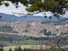 Urbino (PU) - pic by Diego Olivieri - #marche #cultura #storia #arte #raffaellosanzio Grand Canyon, Nature, Travel, Italia, Naturaleza, Viajes, Traveling, Natural, Tourism