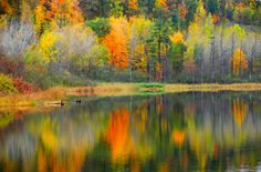 Fall reflections in Upstate New York  - http://earth66.com/autumn/fall-reflections-upstate-new-york/