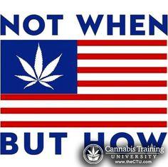 Well Said! | cannabistraininguniversity.com