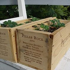 13 Uses for Wine Crates - Articles